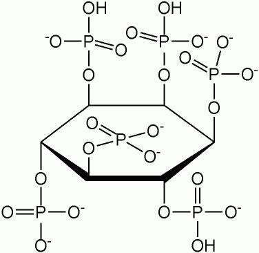 IP6 - hexafosfato de inositol - Freelife4you