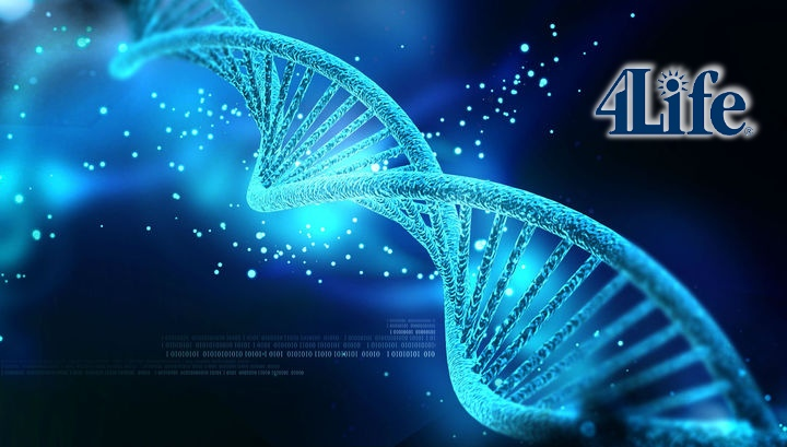 4Life ADN Freelife4you